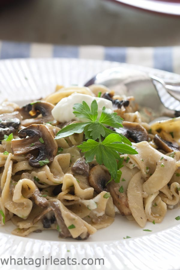 Vegetarian Mushroom Stroganoff. A creamy sauce and lots of mushrooms, makes this a delicious vegetarian entree.