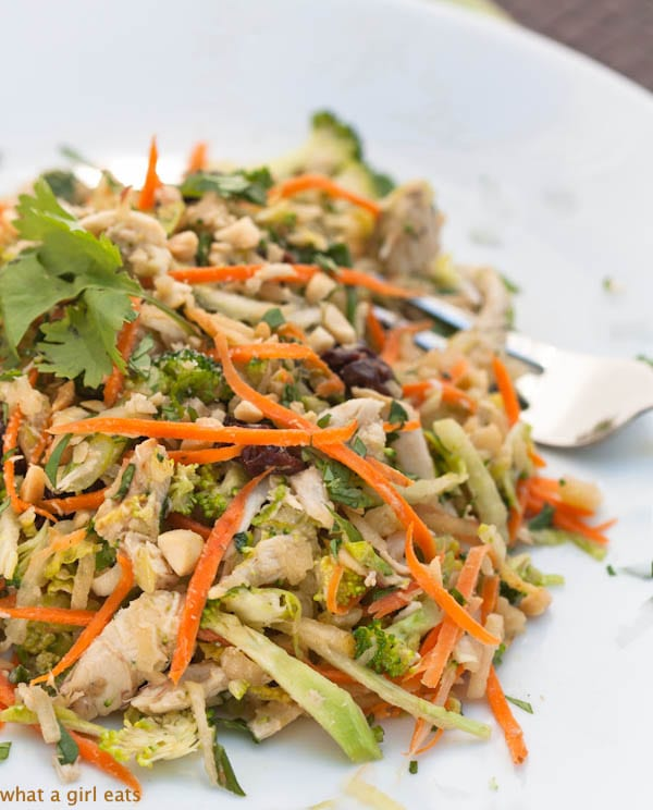 Asian slaw with chicken is a quick and easy weeknight dinner recipe. Crispy vegetables, salty peanuts, and shredded chicken breast, seasoned with tangy, Asian vinaigrette. | WhatAGirlEats.com