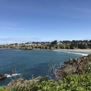 View across the cove to Mendocino atop the bluff. (Photo What A Girl Eats)