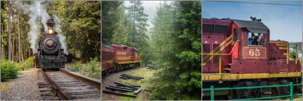 Skunk Train Mendocino
