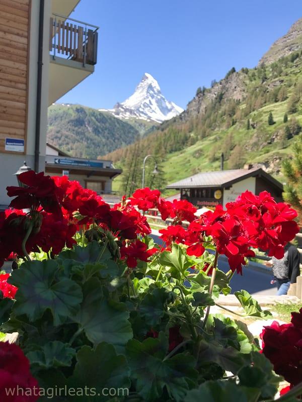 Matterhorn and geraniums