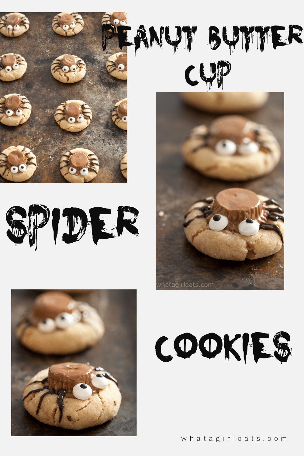 Peanut Butter Spider Cookies are a spooky treat perfect for October!