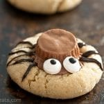 single spider cookie