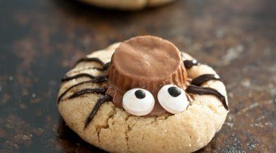 single spider cookie