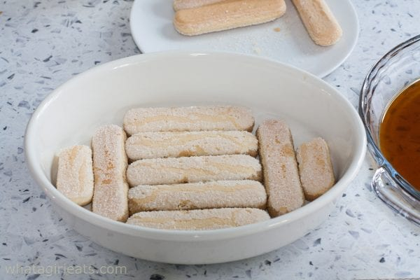 layer of ladyfingers
